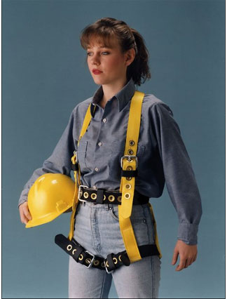 Miller Nonstretch Harnesses